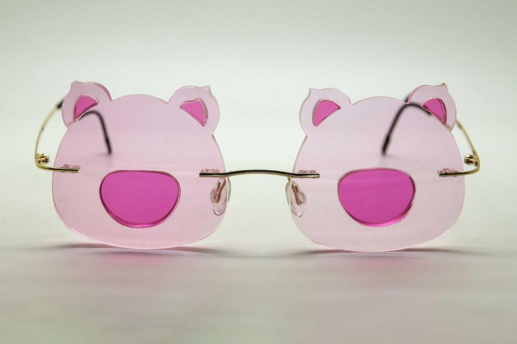 Customised spectacles - Piggy sunglasses with prescription