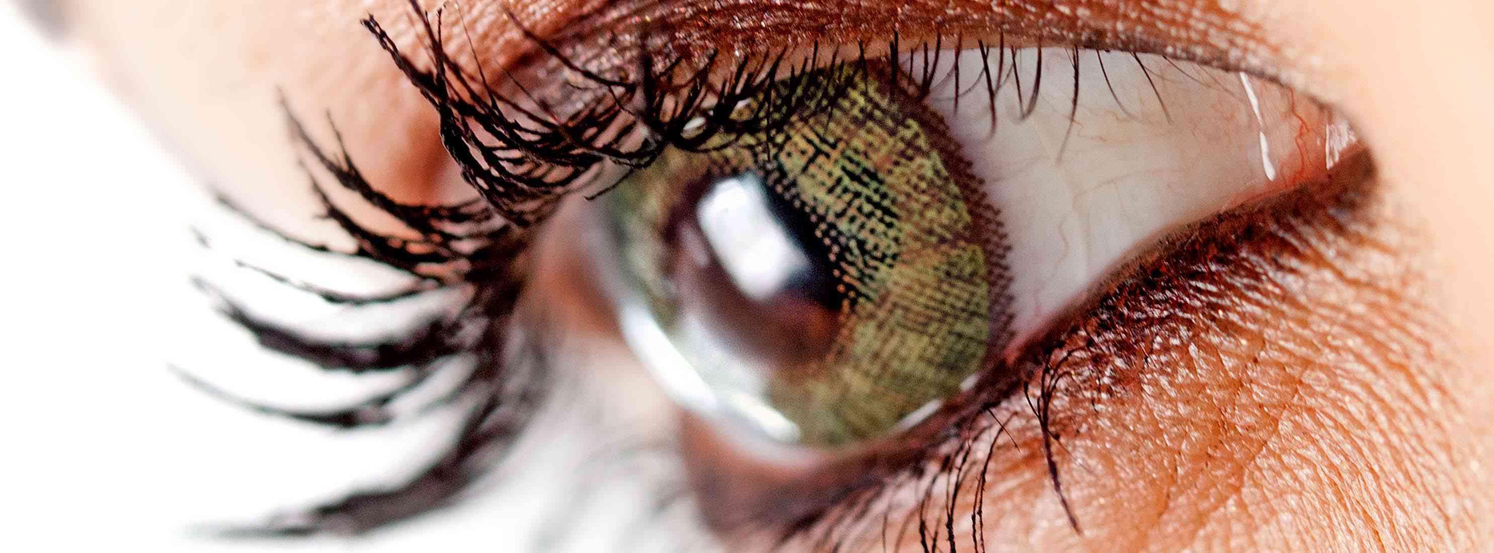 Freshkon Contact Lenses 06 2970x1100